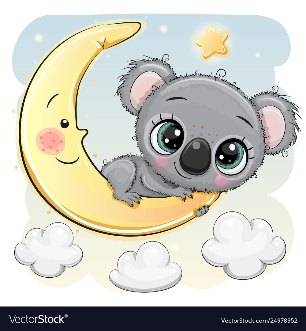 just the koala and the moon and star thumbnail